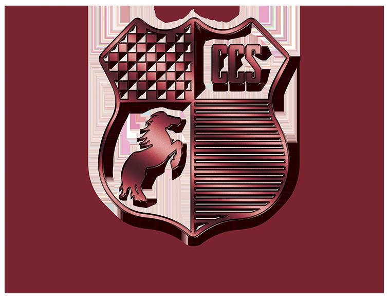 Showcase Detailing - Museum Quality Car Care